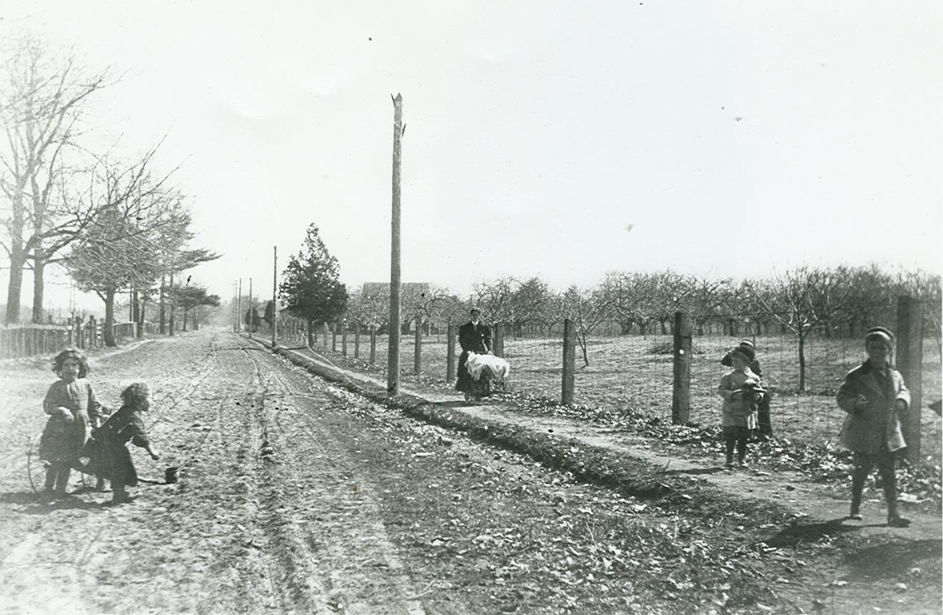 Along Lorne Park Road, c1910