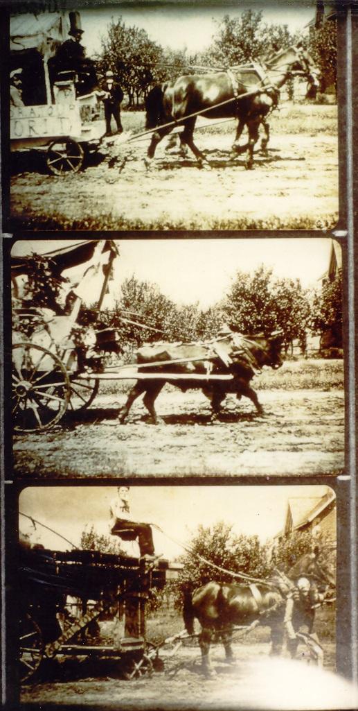 Calathumpian Parade – Malton, c1890