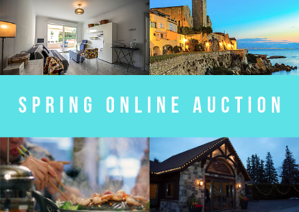 SPRING AUCTION-4