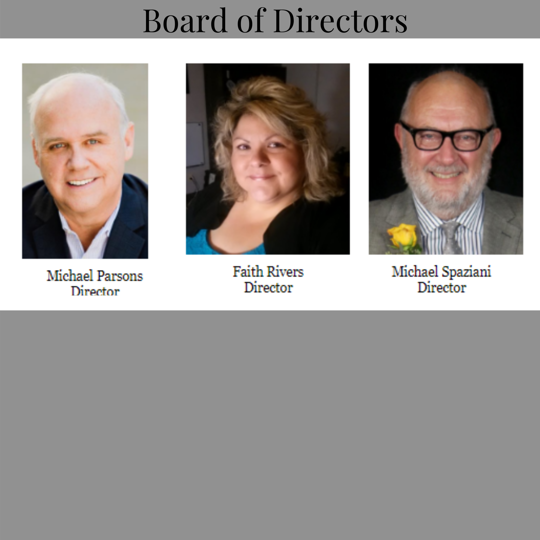 Copy of Copy of Board of Directors 3 WS